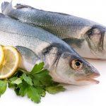 گوشت،مرغ و ماهی صبا